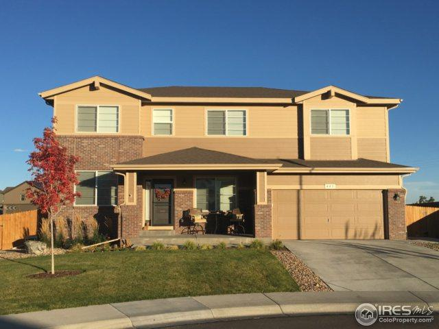 443 Pekin Dr, Johnstown, CO 80534 (MLS #837557) :: The Daniels Group at Remax Alliance