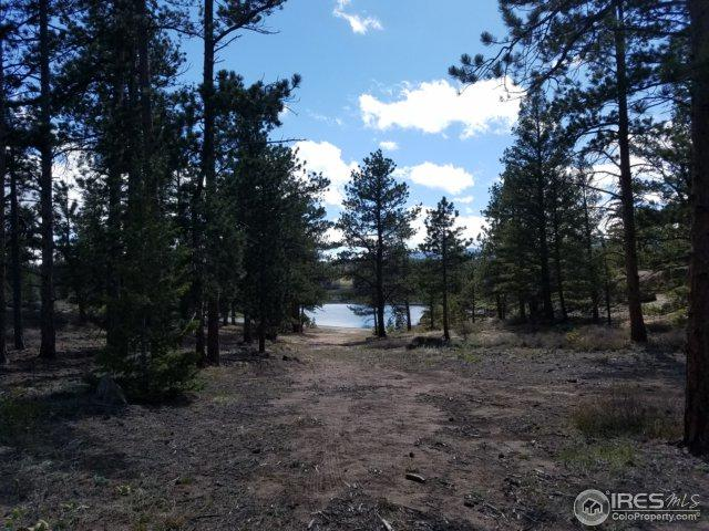 3080 E Fox Acres Dr, Red Feather Lakes, CO 80545 (MLS #839583) :: The Daniels Group at Remax Alliance