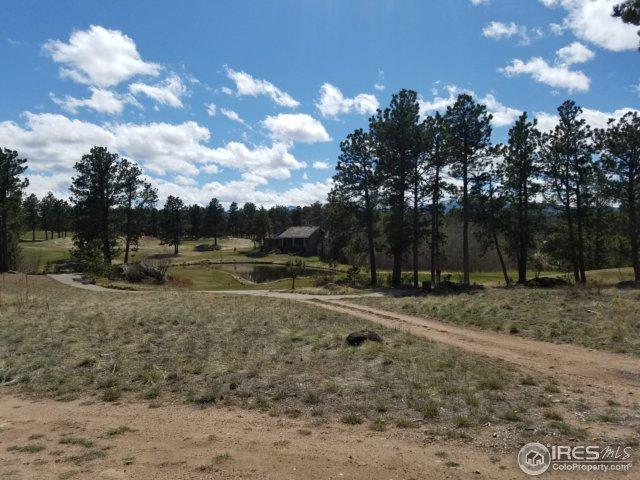 2641 E Fox Acres Dr, Red Feather Lakes, CO 80545 (MLS #839586) :: The Daniels Group at Remax Alliance