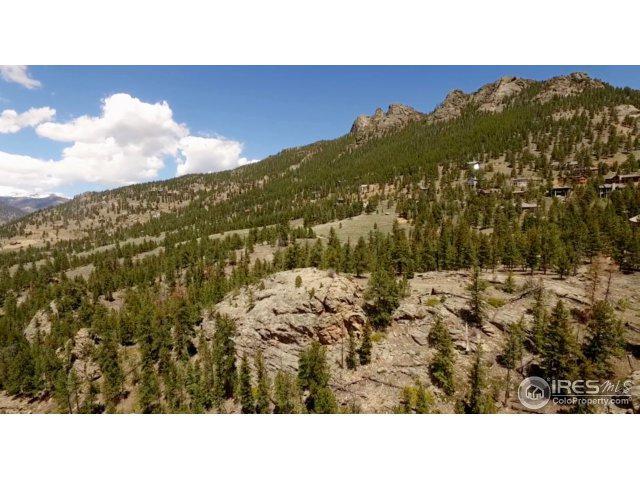 3423 Eaglecliff Cir Dr, Estes Park, CO 80517 (MLS #839667) :: 8z Real Estate