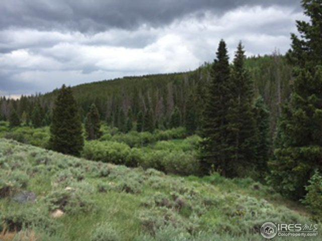 131 Serrano Ct, Red Feather Lakes, CO 80545 (MLS #841061) :: Kittle Real Estate