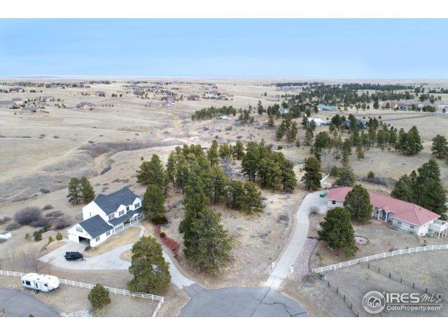 46341 Needleleaf Ln, Parker, CO 80138 (MLS #841207) :: 8z Real Estate