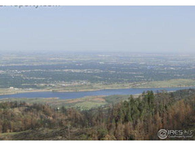 422 Little Whale Rd, Bellvue, CO 80512 (MLS #841521) :: Downtown Real Estate Partners