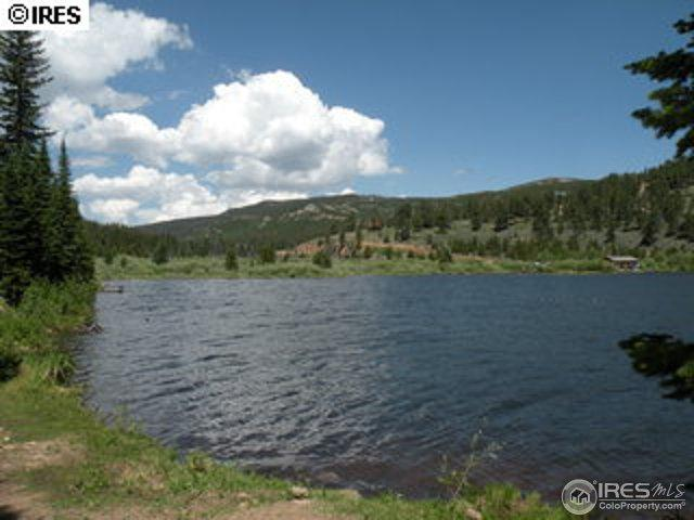 60 Isleta Ct, Red Feather Lakes, CO 80545 (MLS #841561) :: Kittle Real Estate