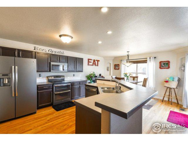 3705 Dry Gulch Rd, Evans, CO 80620 (MLS #841736) :: Kittle Real Estate