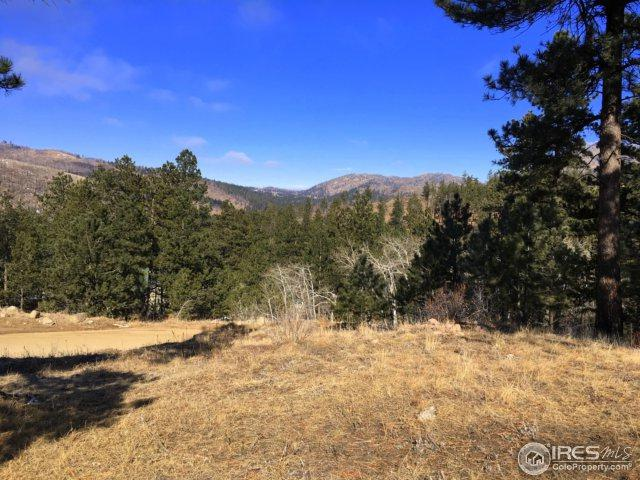 826 Davis Ranch Rd, Bellvue, CO 80512 (MLS #841947) :: Downtown Real Estate Partners