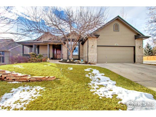 6731 Flagler Rd, Fort Collins, CO 80525 (MLS #842015) :: Kittle Real Estate