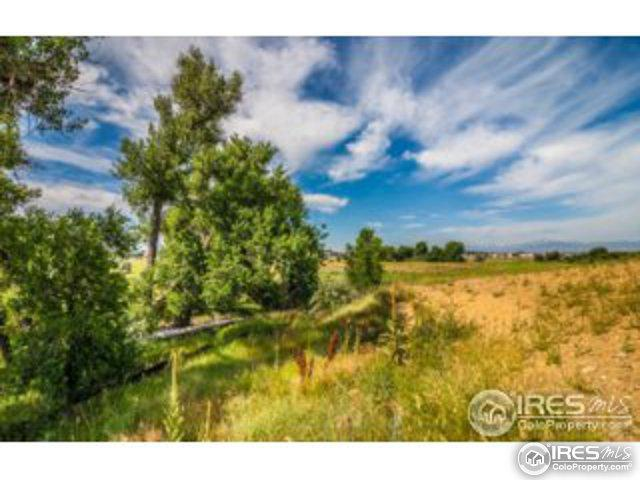 0 Thompson Riverfront, Johnstown, CO 80534 (MLS #842021) :: Kittle Real Estate