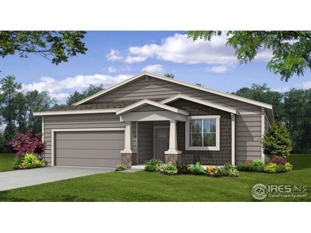 3981 River Birch St, Wellington, CO 80549 (MLS #842030) :: Kittle Real Estate