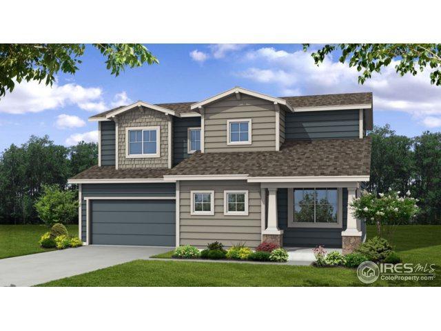 3969 River Birch St, Wellington, CO 80549 (MLS #842031) :: Kittle Real Estate