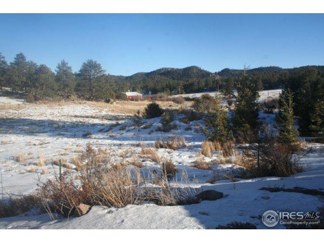 110 Clear Spring Trl, Red Feather Lakes, CO 80545 (MLS #842102) :: Tracy's Team