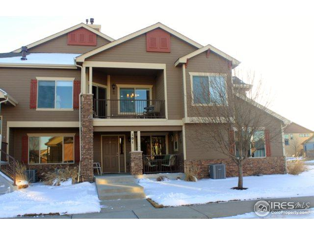 655 Callisto Dr #101, Loveland, CO 80537 (MLS #842698) :: The Daniels Group at Remax Alliance