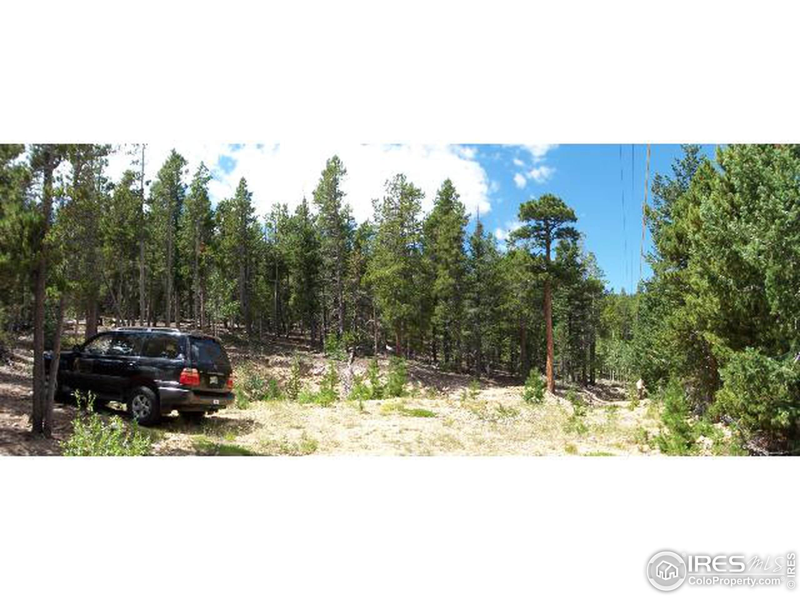 50 Shoshoni Way, Nederland, CO 80466 (MLS #842983) :: Downtown Real Estate Partners