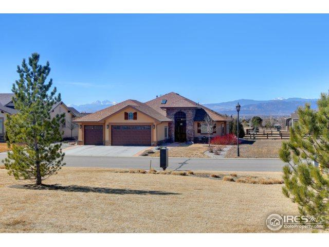 1003 Terrace View St, Timnath, CO 80547 (#843787) :: The Peak Properties Group