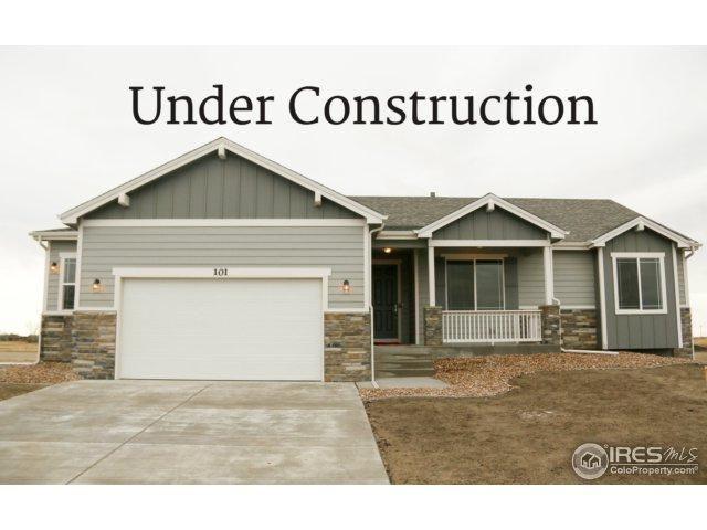 305 11th Ave, Wiggins, CO 80654 (#843884) :: The Peak Properties Group