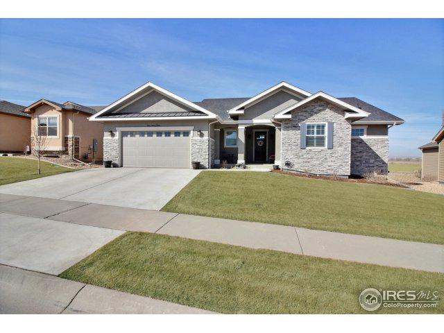 423 Double Tree Dr, Greeley, CO 80634 (#844113) :: The Peak Properties Group