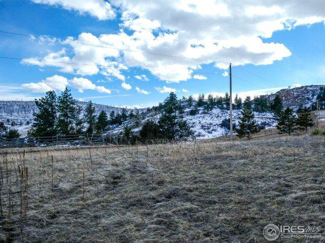 795 Eiger Rd, Livermore, CO 80536 (MLS #844687) :: 8z Real Estate