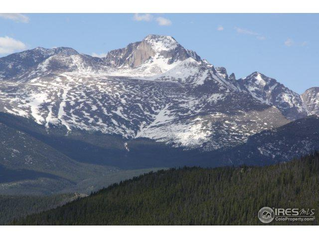 1565 Highway 66 #48, Estes Park, CO 80517 (MLS #844871) :: The Daniels Group at Remax Alliance