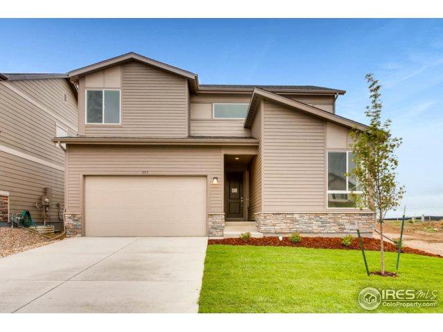 1117 103rd Ave, Greeley, CO 80634 (MLS #844969) :: The Daniels Group at Remax Alliance