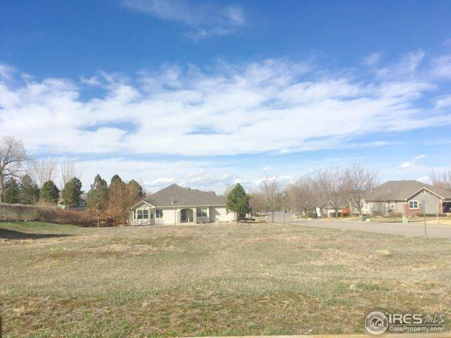 225 Medina Ct, Loveland, CO 80537 (MLS #845040) :: The Daniels Group at Remax Alliance