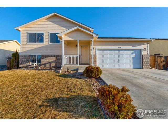 313 E 29th St, Greeley, CO 80631 (#845117) :: The Peak Properties Group