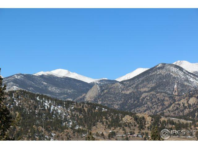 1233 Hondius Ln, Estes Park, CO 80517 (MLS #845233) :: 8z Real Estate