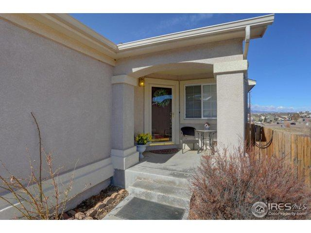 2058 Killdeer Ct, Colorado Springs, CO 80951 (#845424) :: The Peak Properties Group