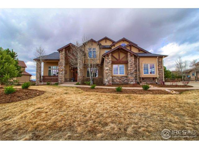 9349 Windhaven Dr, Parker, CO 80134 (#845470) :: The Peak Properties Group