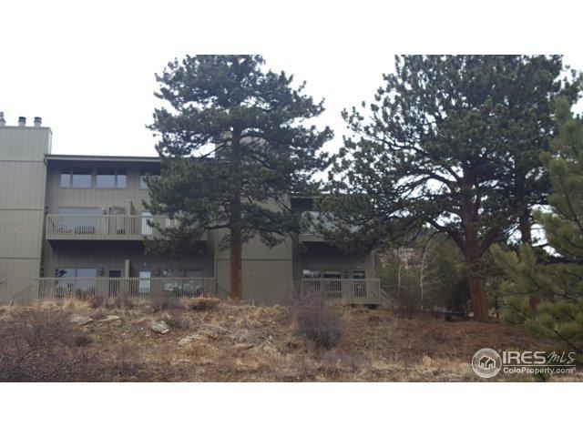 1070 Crestview Ct #5, Estes Park, CO 80517 (MLS #846097) :: The Daniels Group at Remax Alliance