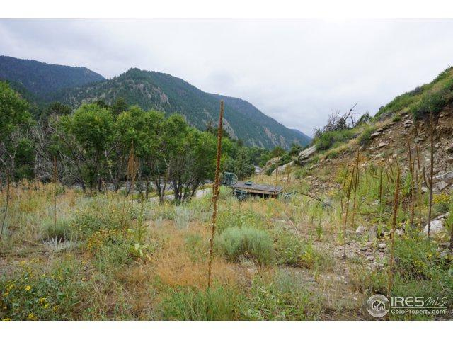32370 Poudre Canyon Rd, Bellvue, CO 80512 (#846643) :: Group 46:10 - Denver