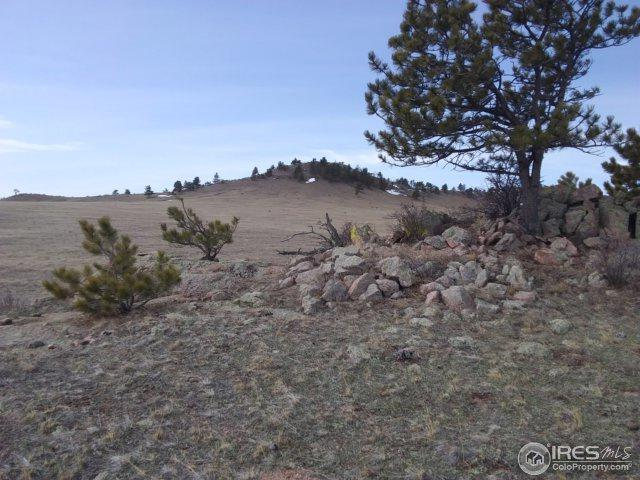 1951 Walno Ave, Livermore, CO 80536 (MLS #846794) :: Kittle Real Estate