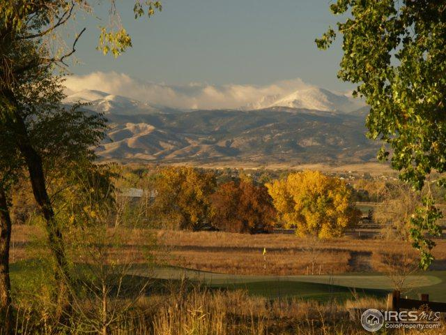 3667 Dorshire Ln, Timnath, CO 80547 (MLS #846905) :: Downtown Real Estate Partners