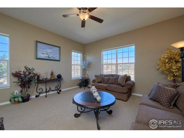 2105 Baguette Dr, Castle Rock, CO 80108 (#847364) :: The Peak Properties Group