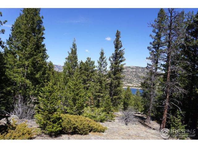 0 Promontory Dr, Estes Park, CO 80517 (MLS #847398) :: Downtown Real Estate Partners