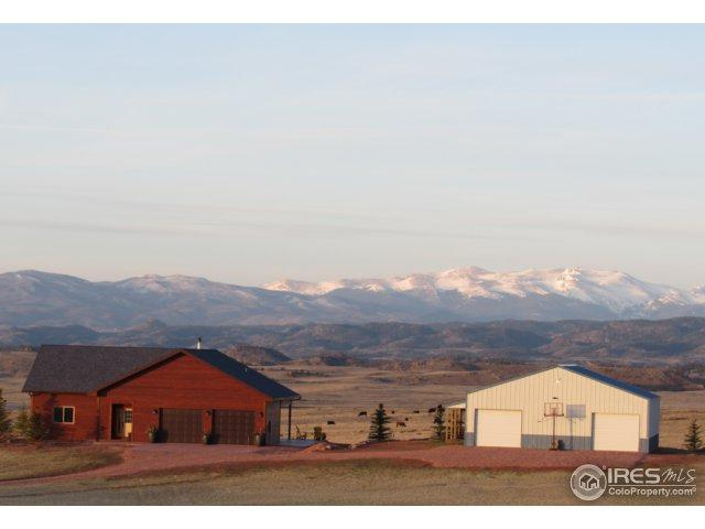 317 Ajax Cyn, Livermore, CO 80536 (MLS #847413) :: Kittle Real Estate