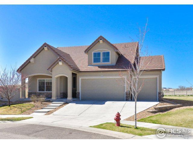 4762 Saddlewood Cir, Johnstown, CO 80534 (MLS #847478) :: Kittle Real Estate