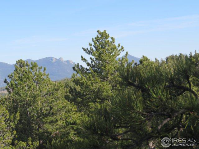 223 County Road 128N, Nederland, CO 80466 (MLS #847625) :: Downtown Real Estate Partners