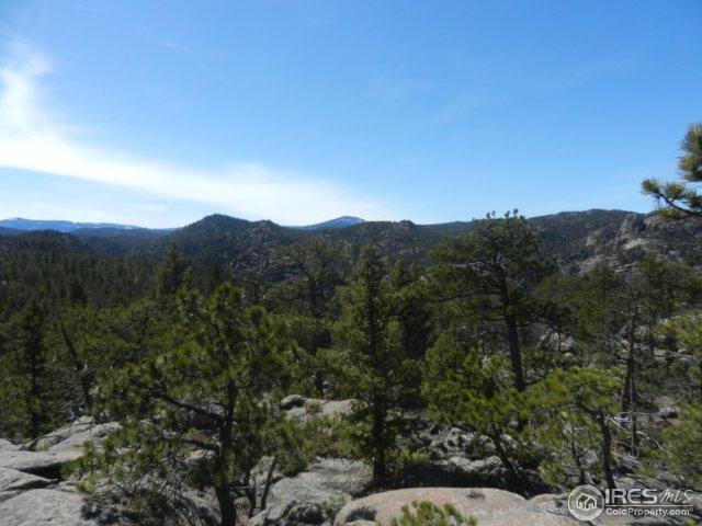 0 Elk Park Rd, Red Feather Lakes, CO 80545 (MLS #848045) :: The Forrest Group