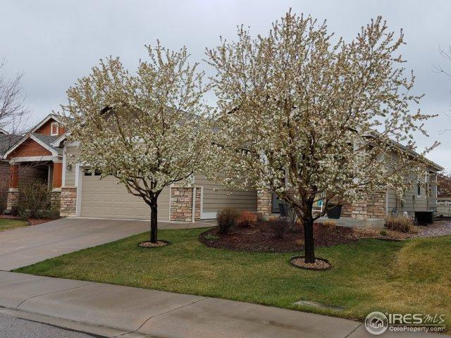 3428 Widefield Ct, Loveland, CO 80538 (MLS #848185) :: The Forrest Group