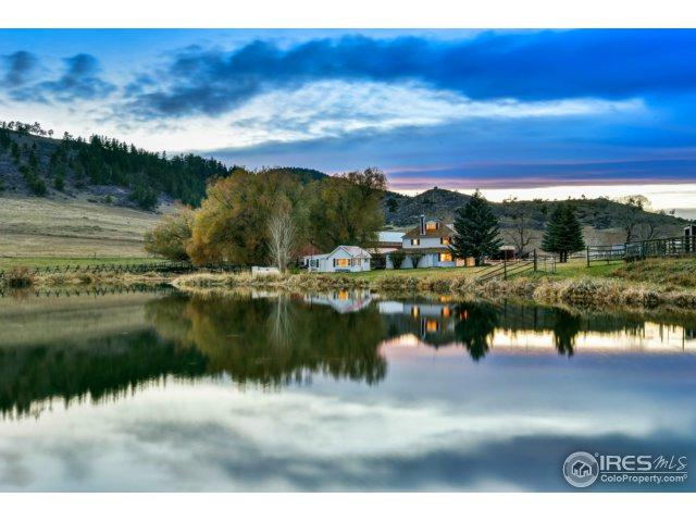 222 Boxer Ranch Rd, Livermore, CO 80536 (MLS #848930) :: Kittle Real Estate