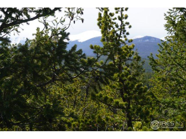 0 Pine Cone Cir, Ward, CO 80481 (MLS #849609) :: 8z Real Estate