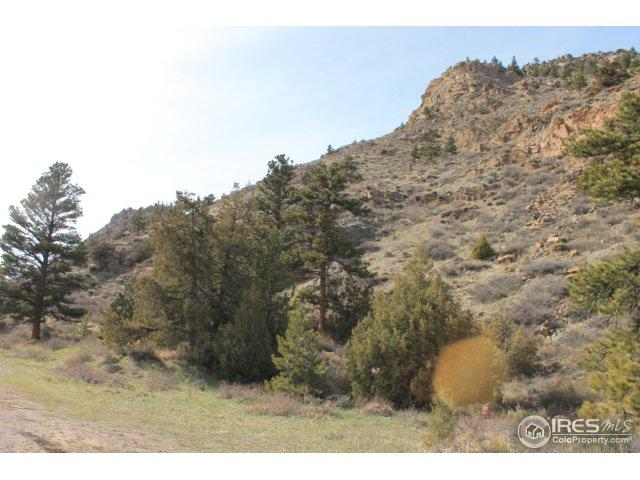 0 Poudre Canyon Hwy, Bellvue, CO 80512 (MLS #850119) :: Downtown Real Estate Partners