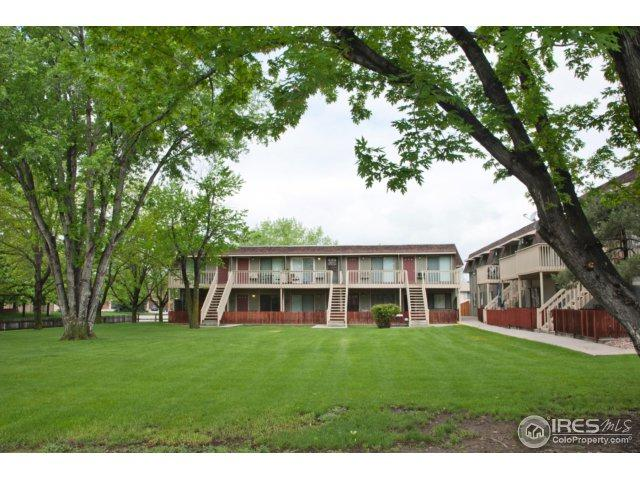 804 Stone Mountain Dr #104, Windsor, CO 80550 (#850320) :: The Griffith Home Team