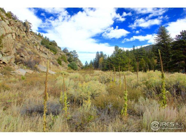 1 Poudre Canyon Hwy, Bellvue, CO 80512 (MLS #850504) :: Downtown Real Estate Partners
