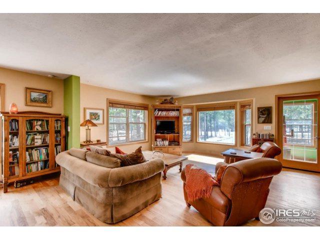 10 Shoshoni Way, Nederland, CO 80466 (MLS #850827) :: Colorado Home Finder Realty