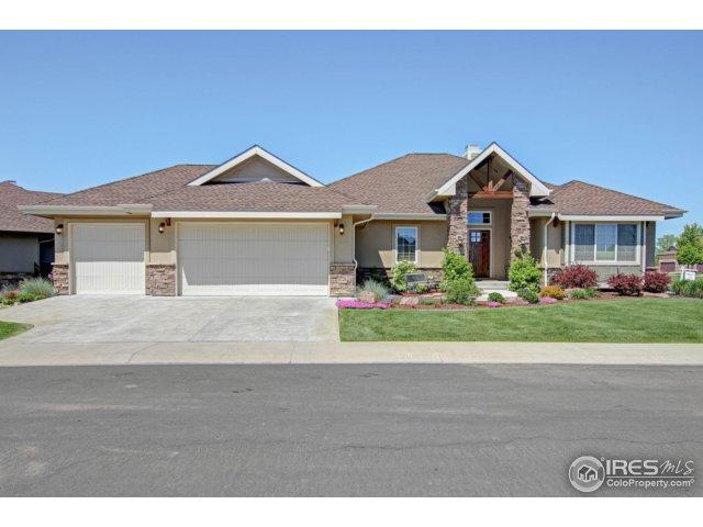 6695 Murano Dr, Windsor, CO 80550 (MLS #850911) :: Colorado Home Finder Realty
