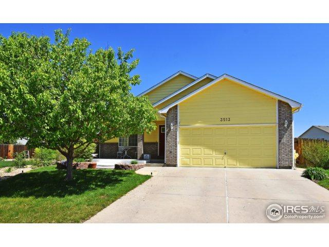 3513 Gunbarrel Ct, Evans, CO 80620 (MLS #851022) :: Kittle Real Estate