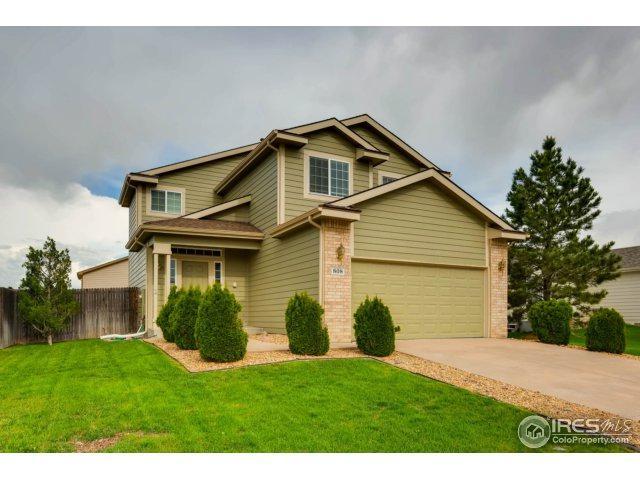 808 Pitkin Way, Castle Rock, CO 80104 (#851174) :: The Peak Properties Group