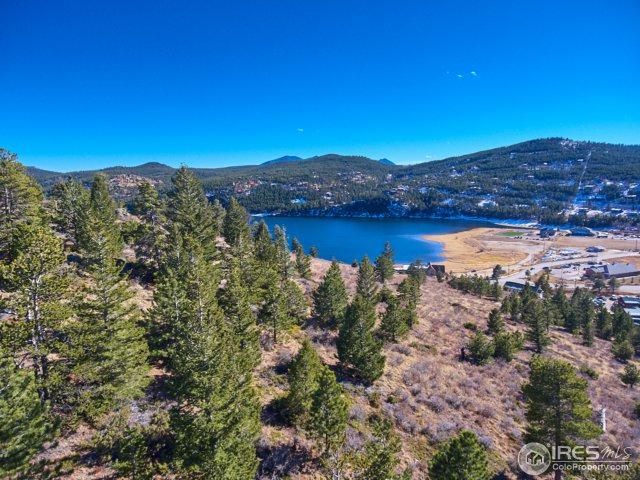 71 Stinky Gulch Rd, Nederland, CO 80466 (#851349) :: My Home Team