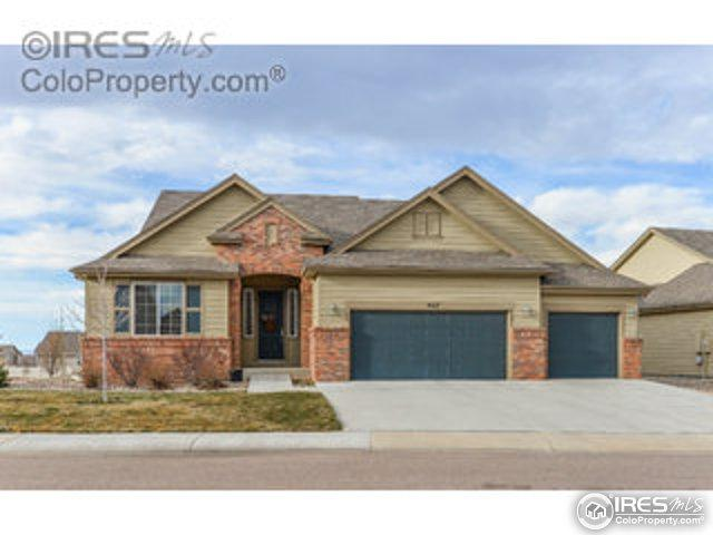 4617 Freehold Dr, Windsor, CO 80550 (#851414) :: The Griffith Home Team